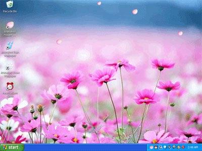 Animated Flower Desktop
